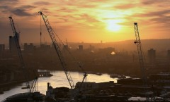 sunrise-with-cranes